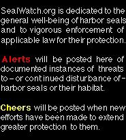 SealWatch.org is dedicated to the general well-being of harbor seals and to vigorous enforcement of applicable law for their protection. Alerts will be posted here of documented instances of continued disturbance or threats to harbor seal safety and habitat; Cheers will be posted when new efforts have been made to extend protection.