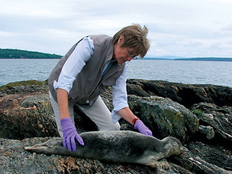SUSAN SHAW WITH SEAL PUP